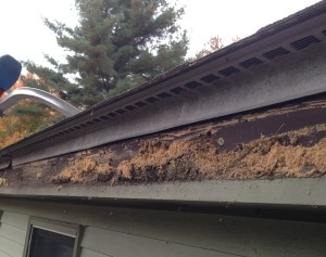 Fascia Damage Under Old Gutters